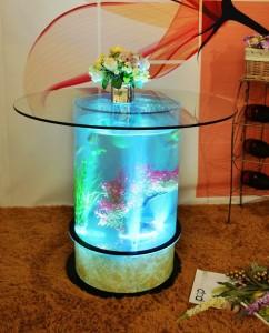 Mini Aquarium Coffee Table