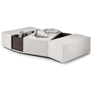 Fold Out Coffee Table with Storage