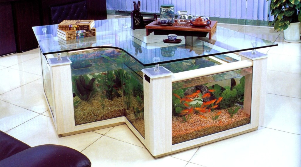 Aquarium Coffee Table Interesting Form