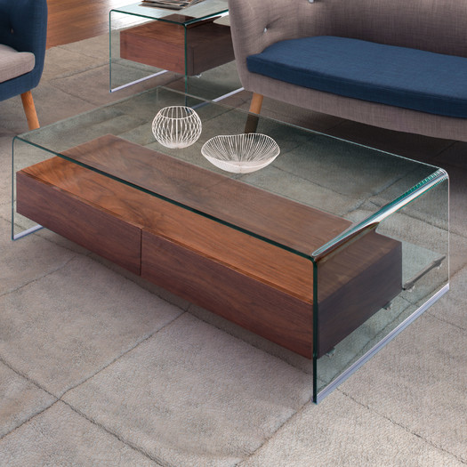 Contemporary Glass Coffee Table with Use of Wood