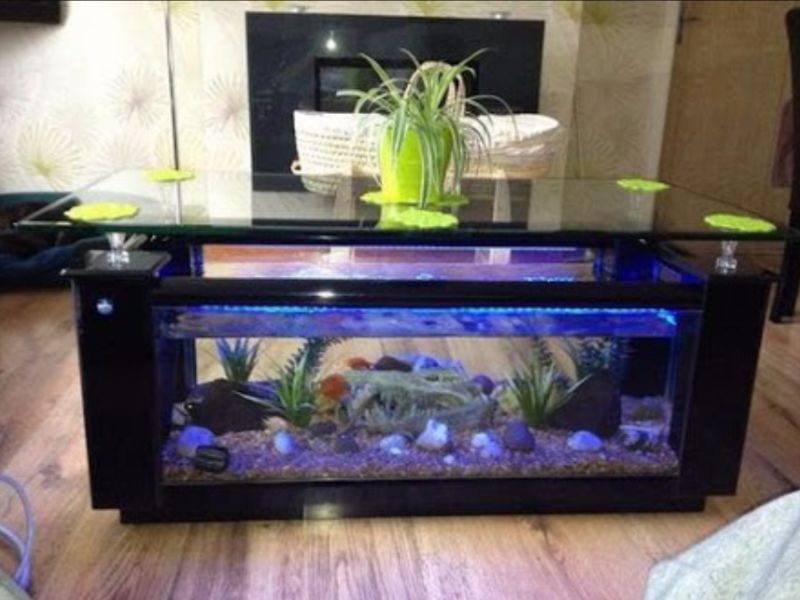 Fish Tank Coffee Table