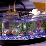 Hexagonal Aquarium Coffee Table