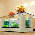 Modern Fish Tank Coffee Table
