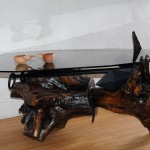 Coffee Table with Polished Driftwood  Base