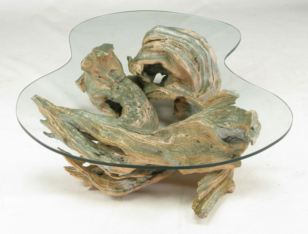 Driftwood Coffee Table with Formed Glass Top