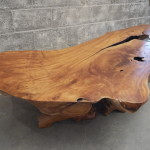 Rude Teak Coffee Table
