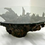 Cool Root Base Coffee Table